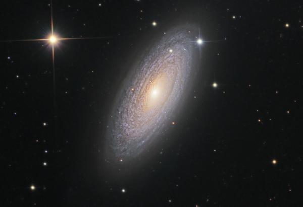 NGC 2841 Spiral Galaxy