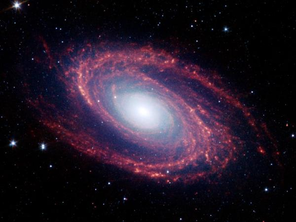 Spiral Galaxy M81 From the Spitzer Space Telescope
