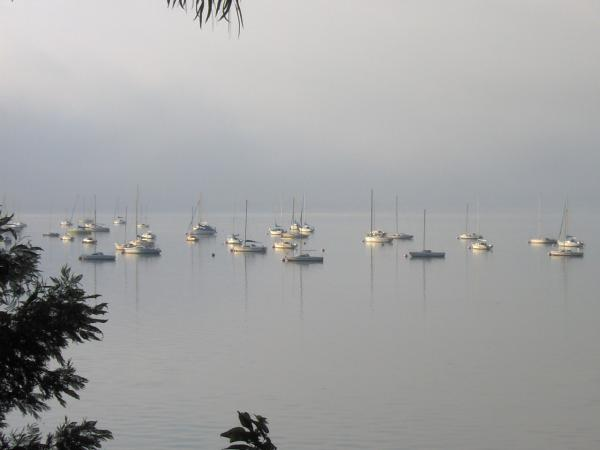 Boats in the mist - I drive past these guys every morning, the other day it was quite misty so you can