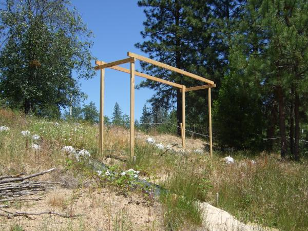 Downhill view of my now level and somewhat square hops trellis. =) It's accidentally a bit wider at the top lengthwise which may compensate for any bowing under weight.