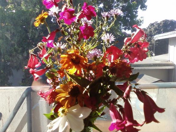 A bouquet I arranged