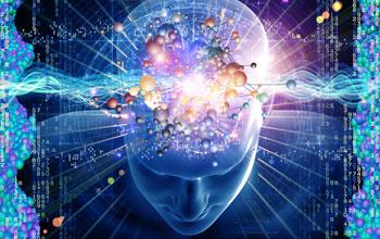 open brain1 F